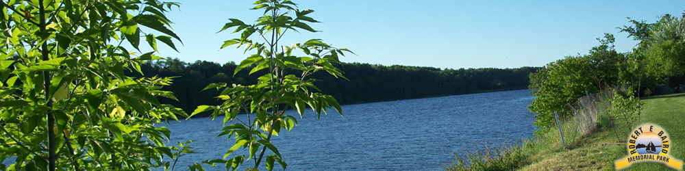 Photo of the beautiful St John River as seen from the shores of Baird's Campground in Perth Andover, NB
